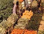 В Челябинской области  отметили праздник урожая