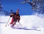 Челябинских школьников учат кататься на горных лыжах
