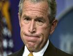 «Надеюсь мы больше никогда не увидим этого говнюка Буша!». Репортаж из Тбилиси