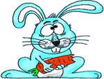 В Челябинске второй месяц ищут хозяина для больного кролика – его не хотят забирать даже бесплатно