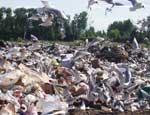 В ходе весенних субботников из Челябинска вывезут 45 тысяч кубометров мусора