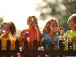 Граждане РФ ставят во главу воспитания образование