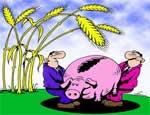 Южноуральские фермеры: министр Феклин поставил крест на программе семейных ферм / Челябинская область не готова выступить гарантом по фермерским кредитам