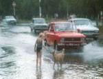 Во время паводка в Челябинске может затопить дороги