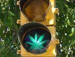В Челябинске появились светофоры с изображением конопли / Горожане гадают: чему дан зеленый свет