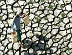 Челябинскую область в ближайшие 40 лет ждет изменение климата