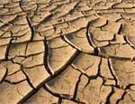 Коркино и поселок Роза летом могут остаться без воды / В городе целый месяц не могут ликвидировать порыв на водоводе