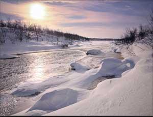 В Златоусте из-за перемерзания реки затопило частный сектор / Дворовые постройки и огороды намертво сковало льдом