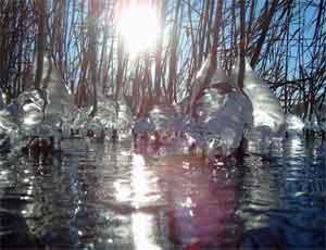 На Южном Урале обещают раннюю весну