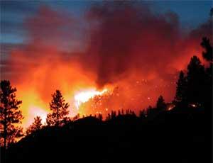 В Кунашакском и Нагайбакском районах из-за природных пожаров объявлен режим ЧС