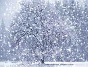 На Южном Урале ожидаются сильный снег и гололедица