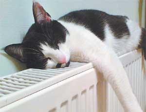 В Вишневогорске подключили к теплу последние 3 дома