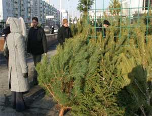 В южноуральских селах возник дефицит елок