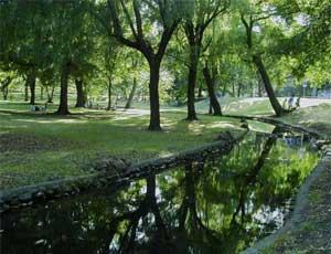 На Южном Урале пытаются создать общественную экологическую инспекцию