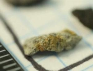 """Челябинский метеорит появился на eBay / """"Осколки"""" небесного тела продают за $50-1000"""