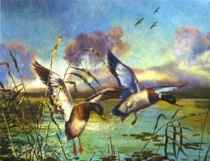 На Южном Урале начинается весенняя охота на пернатую дичь