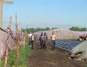 На Южном Урале численность китайских овощеводов сократится