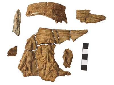 Южноуральские археологи обнаружили кубок с древнеримским орнаментом (ФОТО)