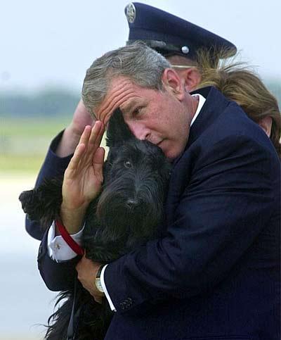 Новый Регион: Spiegel прощается с Джорджем Бушем: самые комичные снимки уходящего президента США (ФОТО)